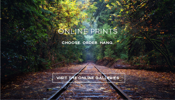 Online Photography Prints by Karen Hutton