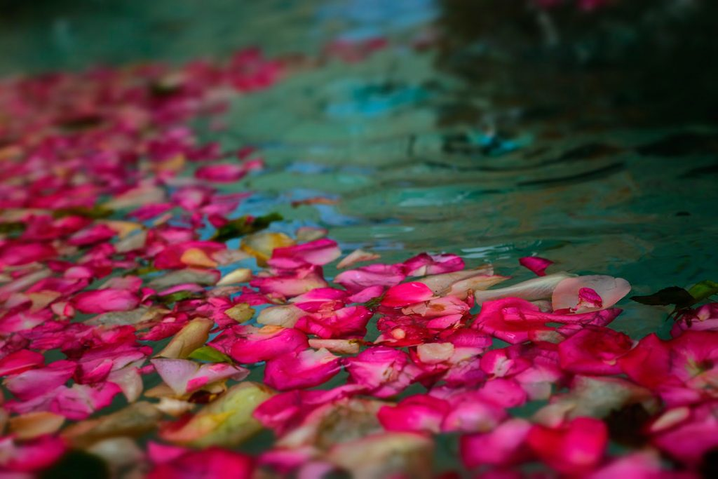FlorallyFloating