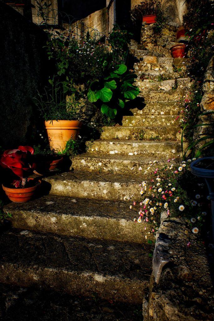Skylark_Steps